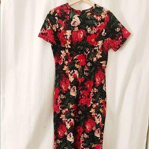 ASOS Rose Dress